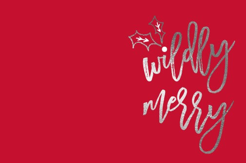 Wildly Merry - christmas cards