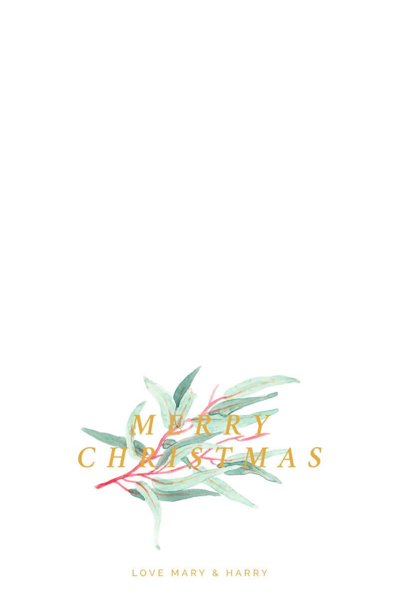 Christmas Eucalypt - Christmas