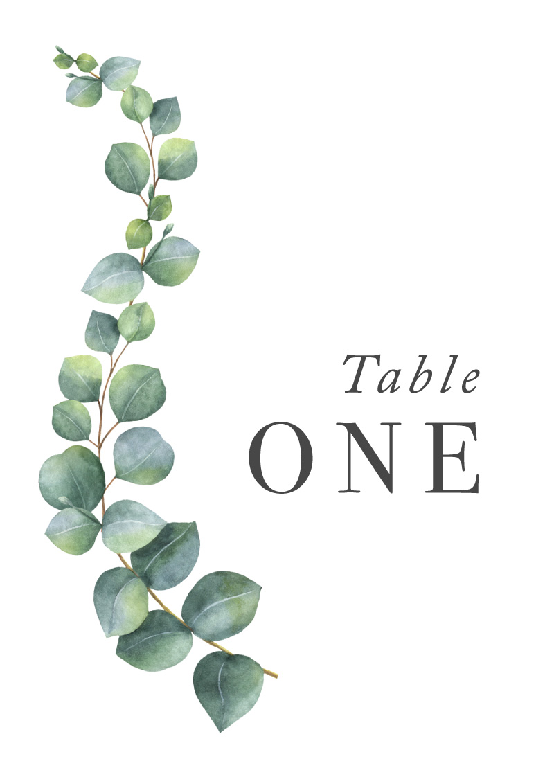 Eucalyptus - Table Numbers