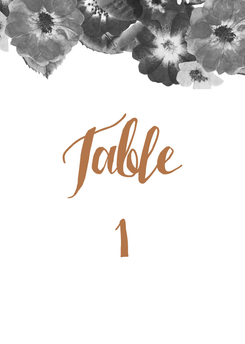 Spring Collection - Table Numbers