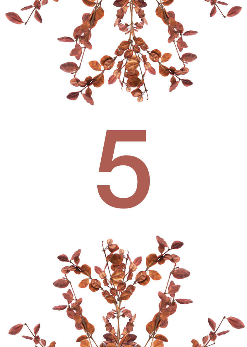 Fall leaves - Table Numbers