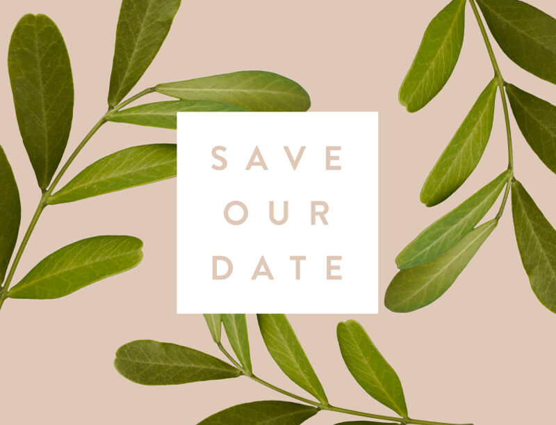 Leif - Save The Date