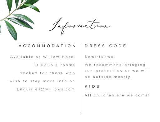 Olive - Information Cards