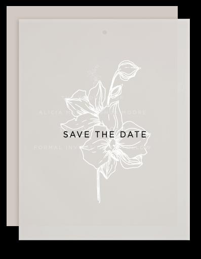 Sophia Kaplan - Save The Date