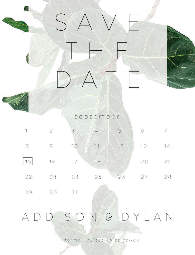 Fiddle Leaf Fig - Save The Date