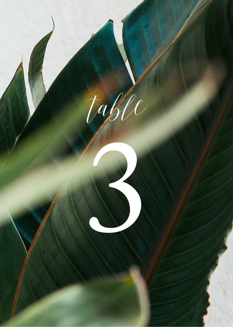 Tropical Leaves - Table Numbers