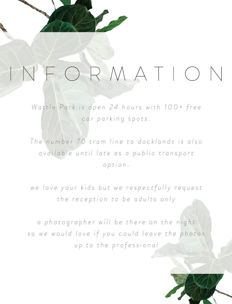 Fiddle Leaf Fig - Information