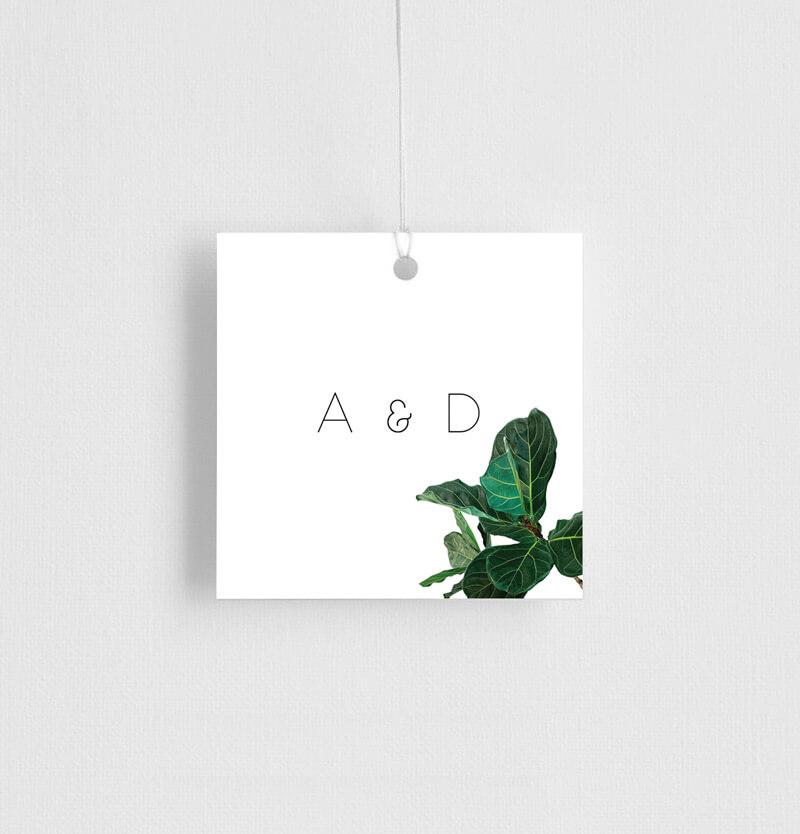 Fiddle Leaf Fig - Gift Tags