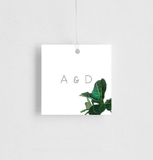 Fiddle Leaf Fig - gift tags