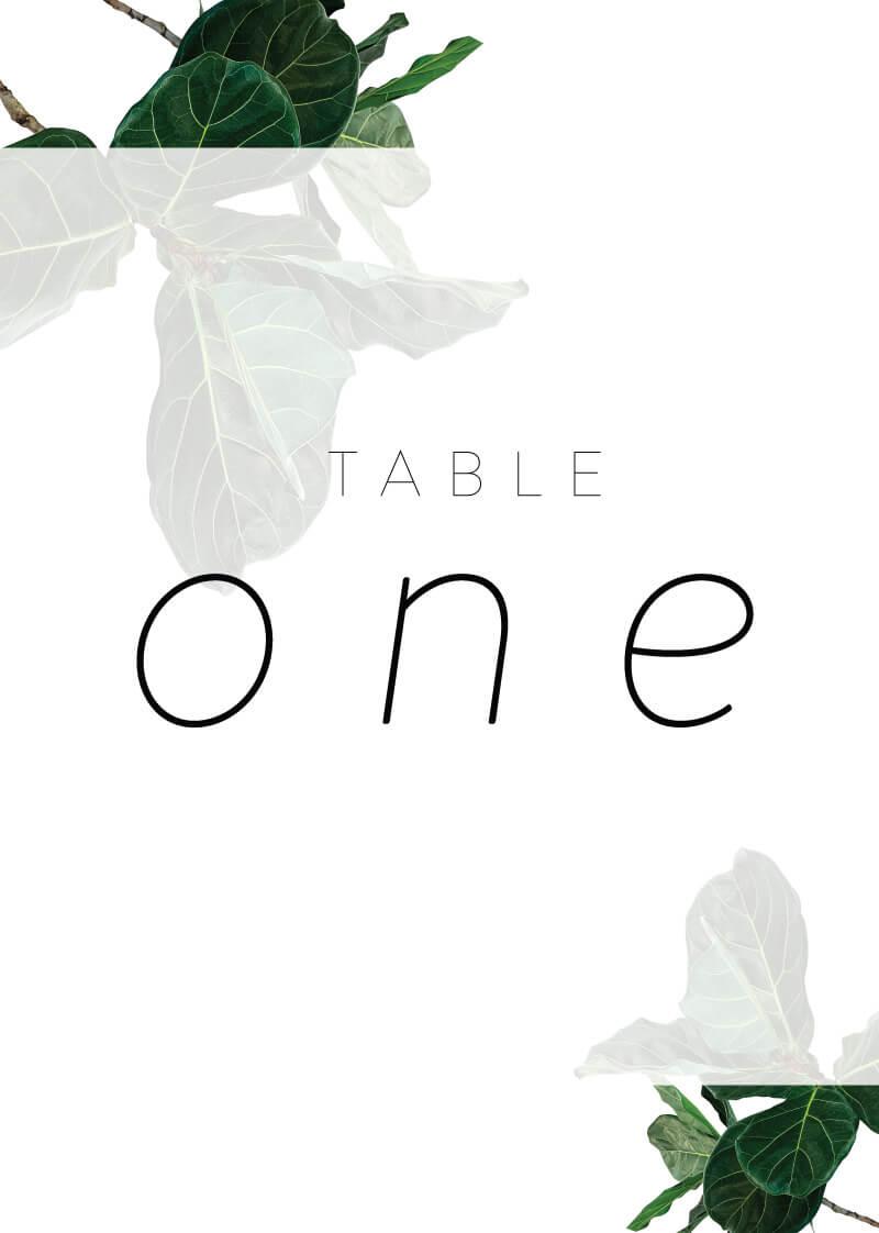 Fiddle Leaf Fig - Table Numbers