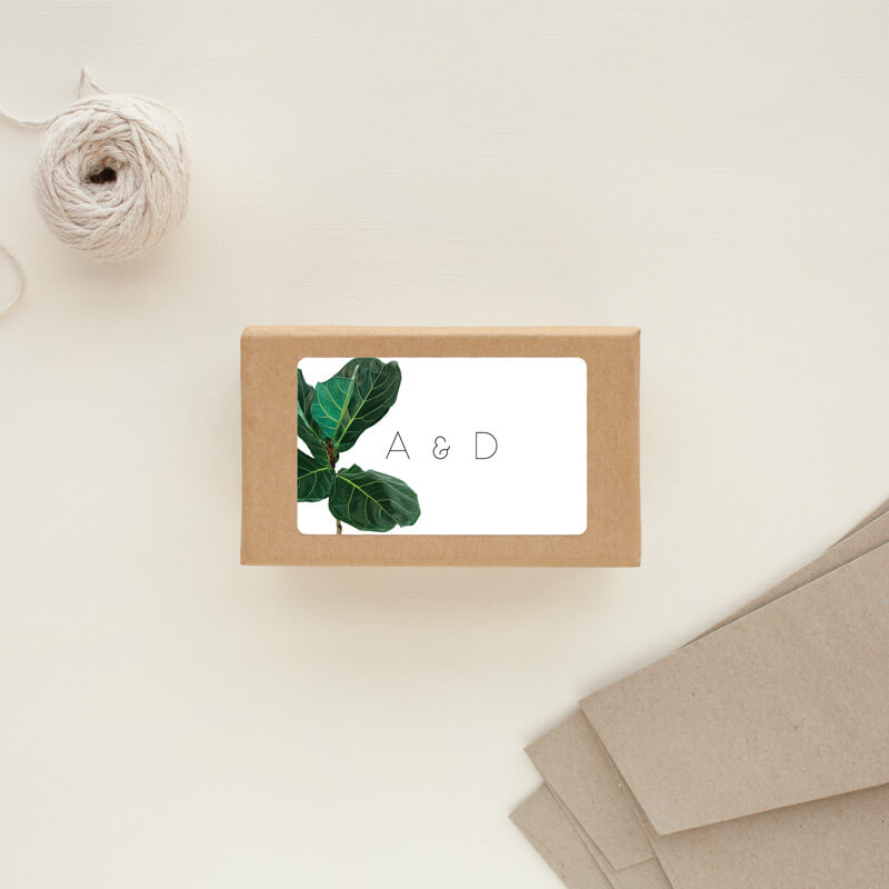 Fiddle Leaf Fig - Stickers