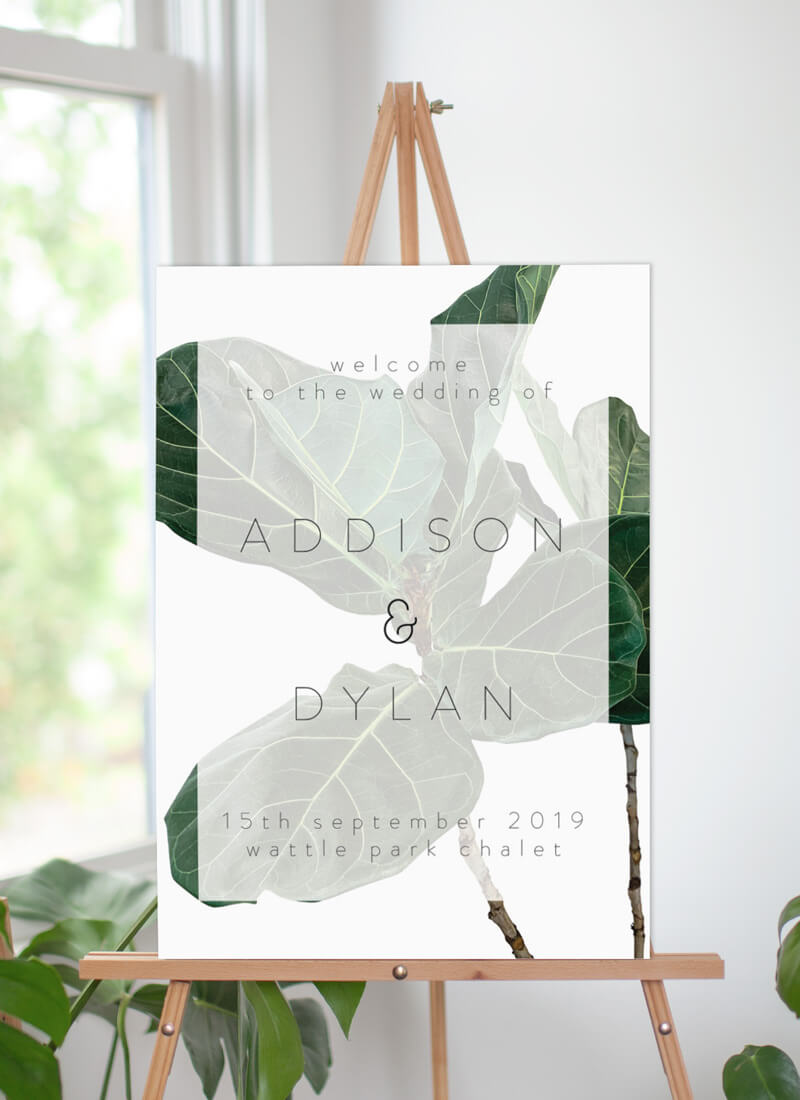 Fiddle Leaf Fig - Welcome Signs