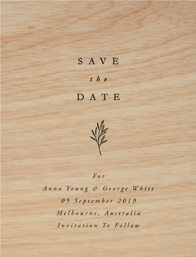 Luna Save The Date - Save The Date