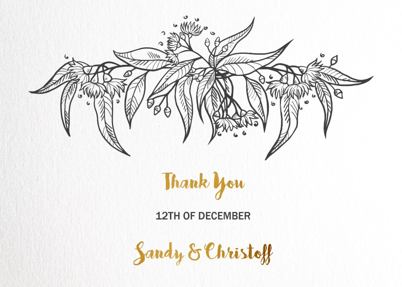 Australiana - Thank You Cards