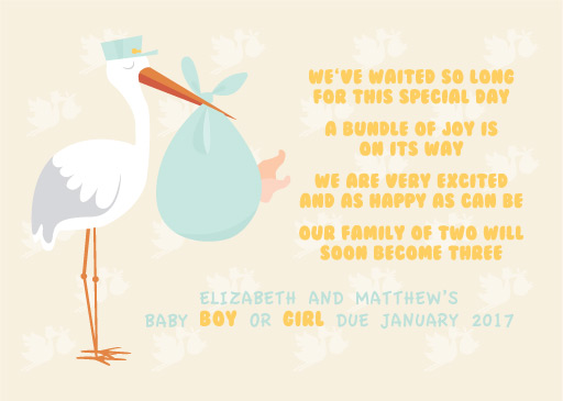 Bundle of Joy - pregnancy announcements