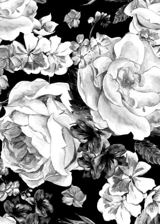 Floral wedding invitations wedding invites cards white flower wedding invitations mightylinksfo