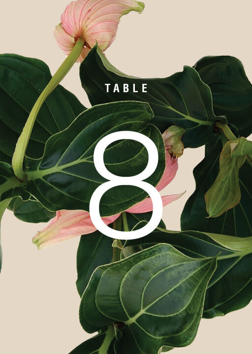 Medinilla - Table Numbers