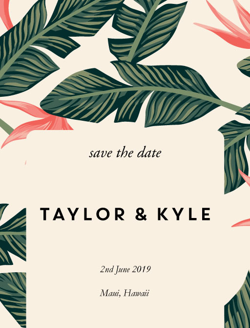 Birds of Paradise - Save The Date