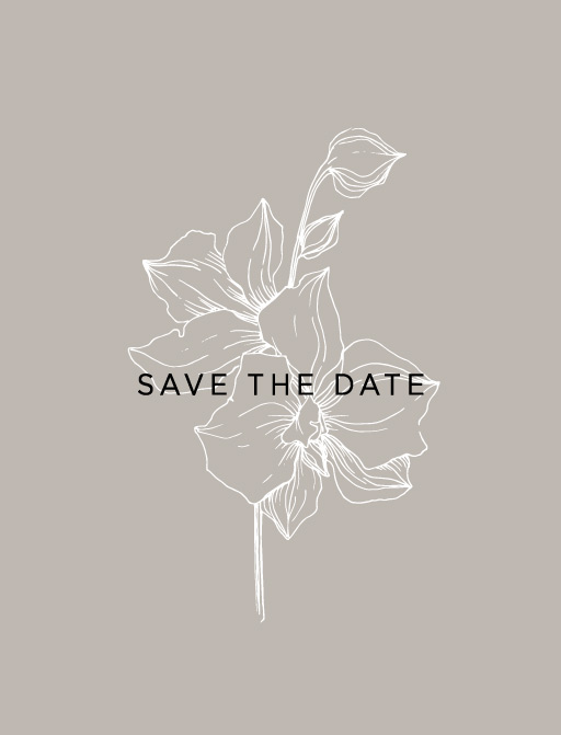 Sophia Kaplan - Save The Date