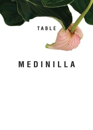Medinilla - Table Numbers