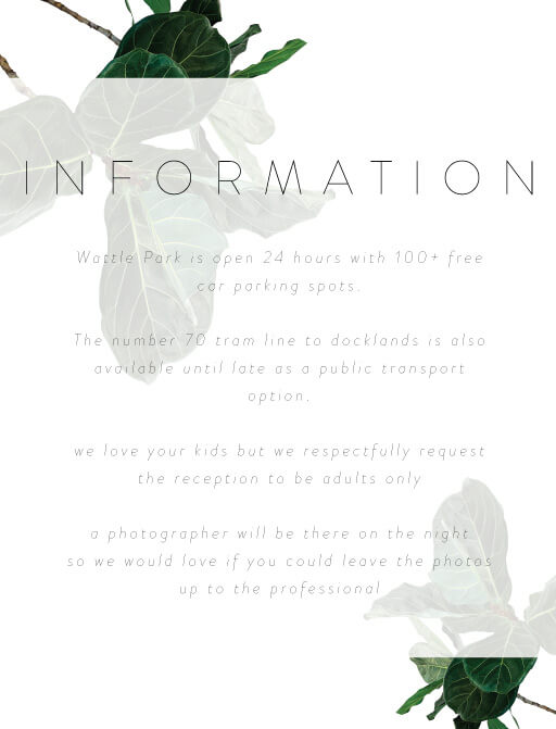Fiddle Leaf Fig - Information Cards