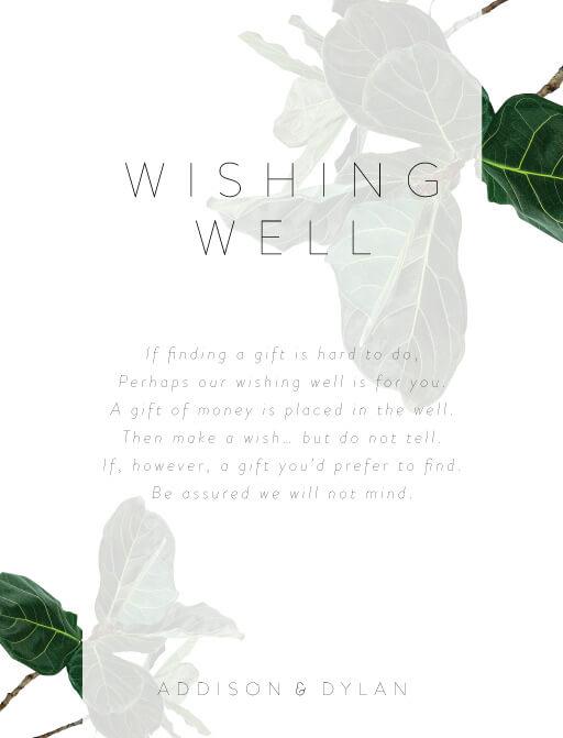 Fiddle Leaf Fig - Wishing Well